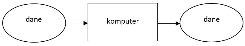 Dane komputer dane schemat